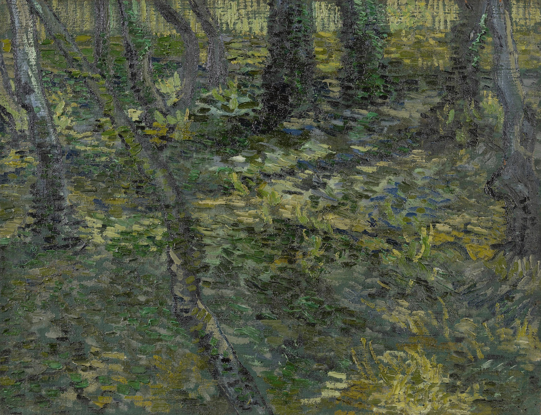 Trees and Undergrowth  Van Gogh Museum