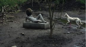 "Talk: ""Pierre Huyghe, Untilled"", by Flora Katz"